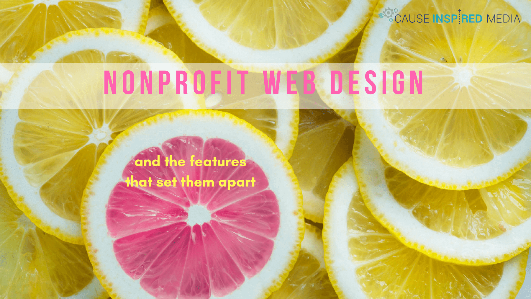 Nonprofit Web Design And The Features That Set Them Apart