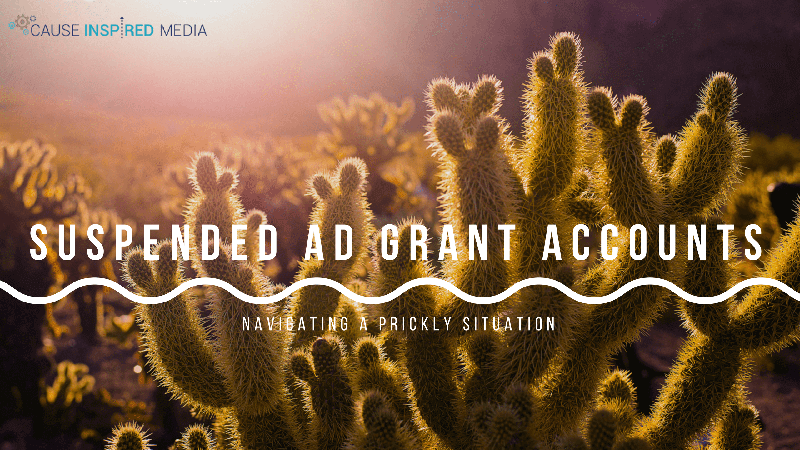 Suspended Ad Grants: Navigating A Prickly Situation