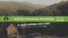 year-round brand awareness a cause inspired case study