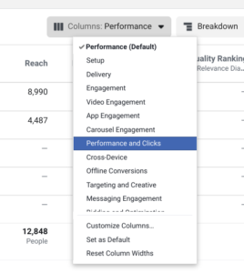performance and clicks columns option
